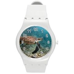 Sea Turtle 3 Round Plastic Sport Watch (m)