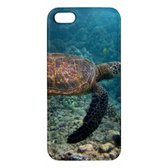 Sea Turtle 3 Apple Iphone 5 Premium Hardshell Case