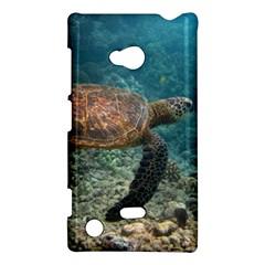 Sea Turtle 3 Nokia Lumia 720