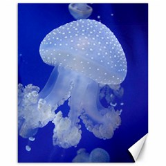 Spotted Jellyfish Canvas 16  X 20