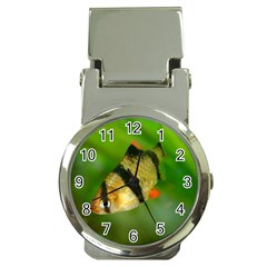 Tiger Barb Money Clip Watches