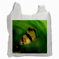 Tiger Barb Recycle Bag (two Side)