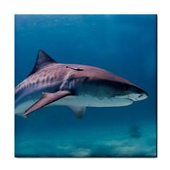 Tiger Shark 1 Tile Coasters