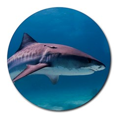 Tiger Shark 1 Round Mousepads