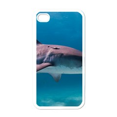 Tiger Shark 1 Apple Iphone 4 Case (white)