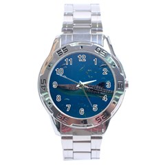 Whale Shark 1 Stainless Steel Analogue Watch
