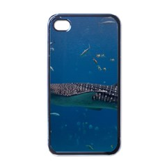 Whale Shark 1 Apple Iphone 4 Case (black)