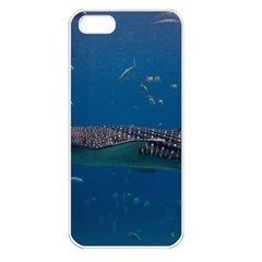 Whale Shark 1 Apple Iphone 5 Seamless Case (white)