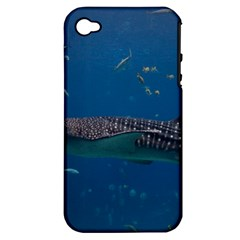 Whale Shark 1 Apple Iphone 4/4s Hardshell Case (pc+silicone)