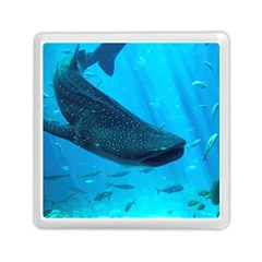 Whale Shark 2 Memory Card Reader (square)