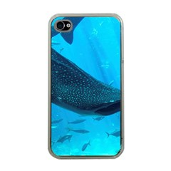 Whale Shark 2 Apple Iphone 4 Case (clear)