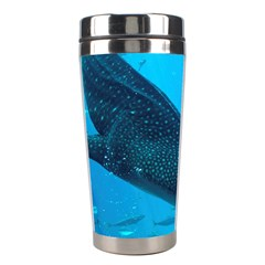 Whale Shark 2 Stainless Steel Travel Tumblers