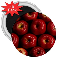 Apples 2 3  Magnets (10 Pack)