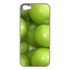 Apples 4 Apple Iphone 5 Case (silver)