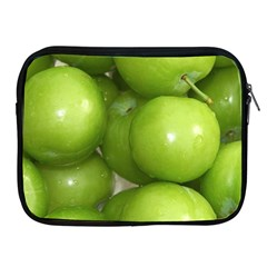 Apples 4 Apple Ipad 2/3/4 Zipper Cases
