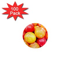 Apricots 1 1  Mini Magnets (100 Pack)