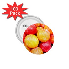 Apricots 1 1 75  Buttons (100 Pack)