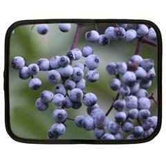 Blueberries 2 Netbook Case (xl)