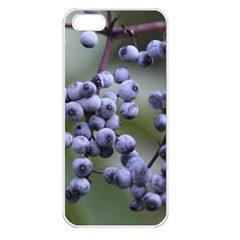Blueberries 2 Apple Iphone 5 Seamless Case (white)