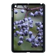 Blueberries 2 Apple Ipad Mini Case (black)