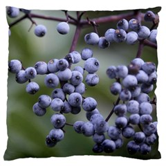 Blueberries 2 Standard Flano Cushion Case (one Side)