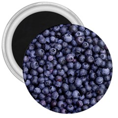 Blueberries 3 3  Magnets