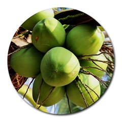 Coconuts 1 Round Mousepads