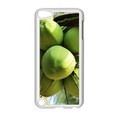 Coconuts 1 Apple Ipod Touch 5 Case (white)