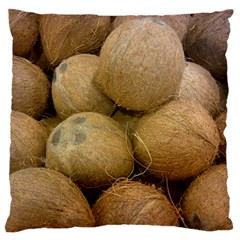 Coconuts 2 Large Flano Cushion Case (one Side)