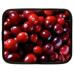 Cranberries 1 Netbook Case (large)