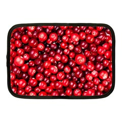 Cranberries 2 Netbook Case (medium)