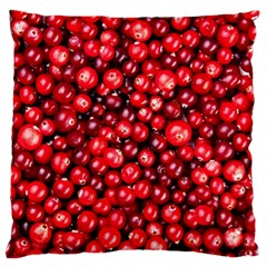 Cranberries 2 Large Flano Cushion Case (one Side)