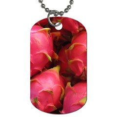 Dragonfruit Dog Tag (two Sides)