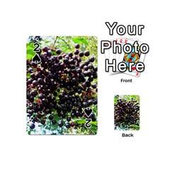 Elderberries Playing Cards 54 (mini)