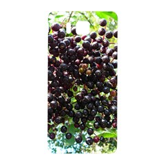 Elderberries Samsung Galaxy Alpha Hardshell Back Case