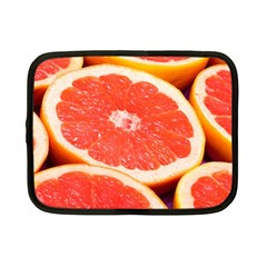 Grapefruit 1 Netbook Case (small)