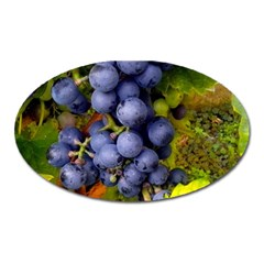 Grapes 1 Oval Magnet