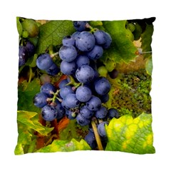 Grapes 1 Standard Cushion Case (two Sides)