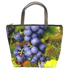 Grapes 1 Bucket Bags
