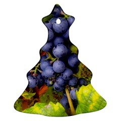 Grapes 1 Christmas Tree Ornament (two Sides)