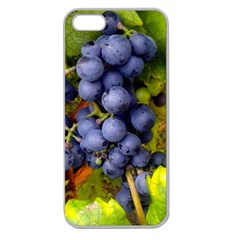 Grapes 1 Apple Seamless Iphone 5 Case (clear)