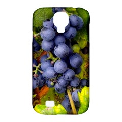 Grapes 1 Samsung Galaxy S4 Classic Hardshell Case (pc+silicone)