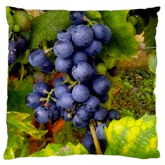 Grapes 1 Standard Flano Cushion Case (two Sides)