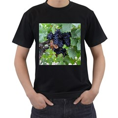 Grapes 3 Men s T Shirt (black) (two Sided)