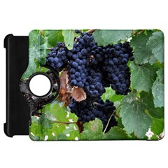 Grapes 3 Kindle Fire Hd 7