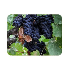 Grapes 3 Double Sided Flano Blanket (mini)
