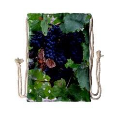 Grapes 3 Drawstring Bag (small)