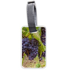 Grapes 4 Luggage Tags (two Sides)