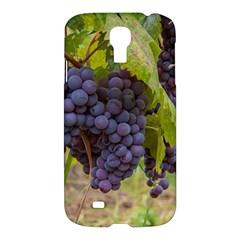 Grapes 4 Samsung Galaxy S4 I9500/i9505 Hardshell Case