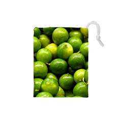 Limes 1 Drawstring Pouches (small)